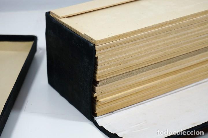 Antigüedades: MICROSCOPIO. ANTIGUA CAJA PARA PREPARACIONES MICROSCOPICAS c.1900 - Foto 5 - 222681400