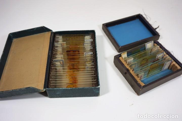 MICROSCOPIO. ANTIGUAS CAJAS CON PREPARACIONES DE ORIGEN ALEMÁN C.1920 (Antigüedades - Técnicas - Instrumentos Ópticos - Microscopios Antiguos)
