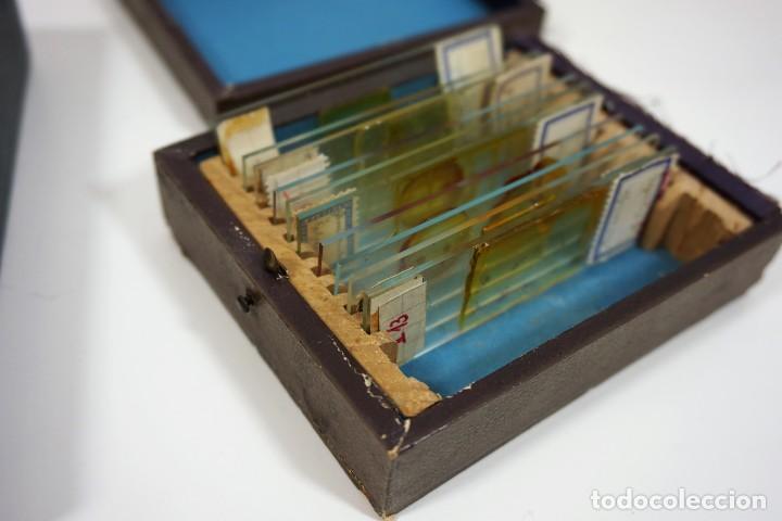 Antigüedades: MICROSCOPIO. ANTIGUAS CAJAS CON PREPARACIONES DE ORIGEN ALEMÁN c.1920 - Foto 4 - 222807758
