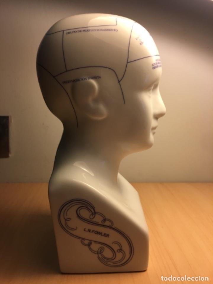 Antigüedades: Busto de porcelana de Frenología I.N - 25 cm altura - Foto 2 - 227464975