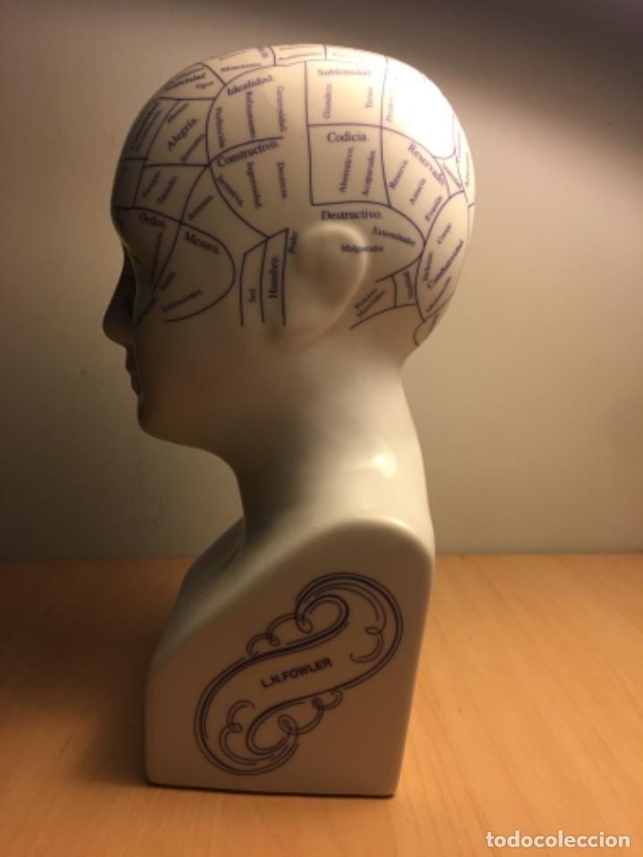 Antigüedades: Busto de porcelana de Frenología I.N - 25 cm altura - Foto 4 - 227464975