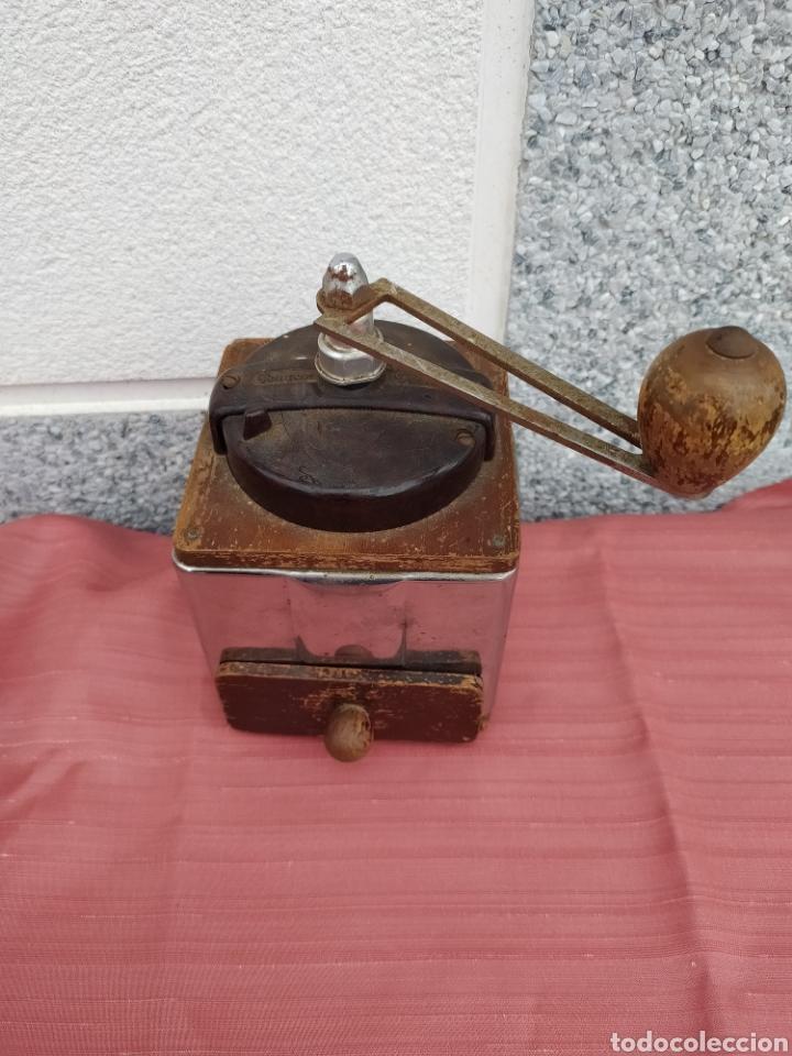 Antigüedades: Molinillo madera y chapa Peugeot freres - Foto 2 - 228068430