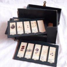 Antiquités: CAJA CON PREPARACIONES DE MICROSCOPIO. FIRMADAS DEL RIO ORTEGA Y H. E. HISTORIA MEDICINA.. Lote 243439505