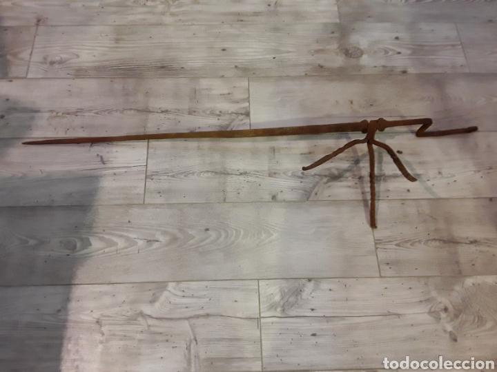 Antigüedades: Asadera de espada en forja - Foto 2 - 244708105
