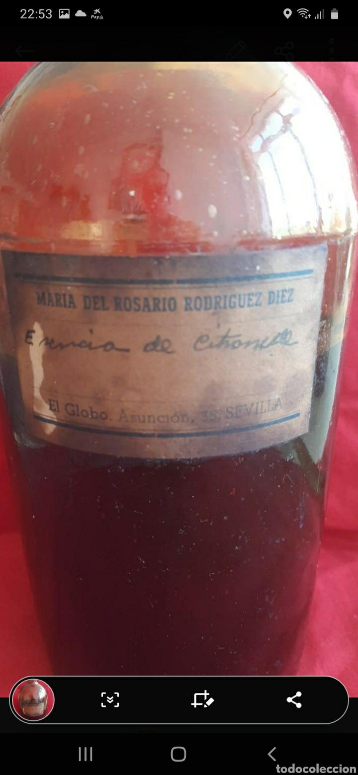 Antigüedades: antigua botella de farmacia - Foto 2 - 250261510