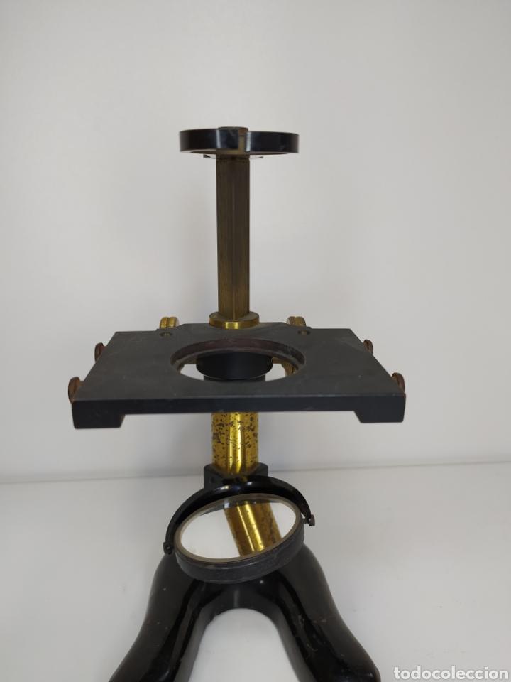 Antigüedades: Microscopio de disección. E. Leitz. Wetzlar. C. 1900 - Foto 3 - 263203460