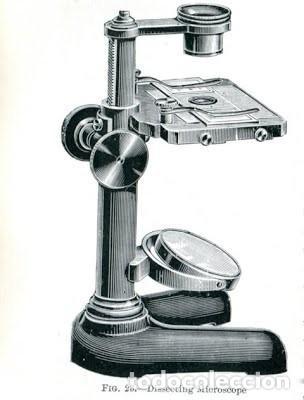Antigüedades: Microscopio de disección. E. Leitz. Wetzlar. C. 1900 - Foto 9 - 263203460