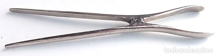 ANTIGUAS PINZAS, TENAZA MEDICO - VETERINARIO (Antigüedades - Técnicas - Herramientas Profesionales - Medicina)