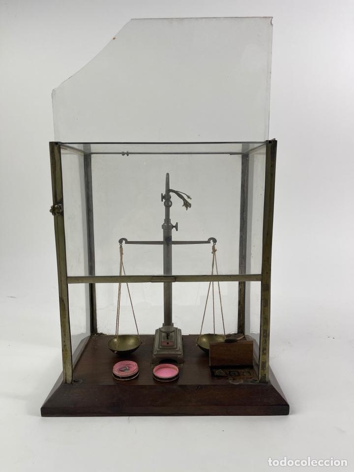 BALANZA DE METAL CON PESOS Y URNA DE CRISTAL. PRINCIPIOS S.XX. (Antigüedades - Técnicas - Medidas de Peso - Balanzas Antiguas)