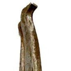 Antigüedades: LLAMADOR, ALDABA GÓTICA DE HIERRO FORJADO. SIGLO XV. FÁLICO, MARTILLO. RESTAURADO. 17X11X2. LEER. Lote 286877178