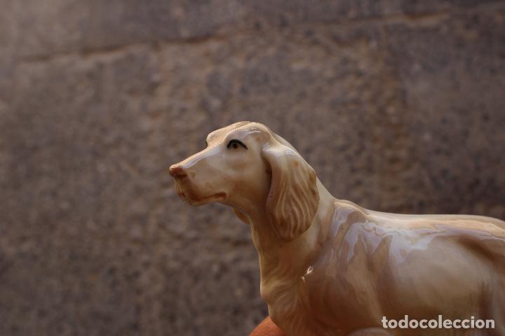 Antigüedades: perro cocker de deramica - Foto 3 - 288434328