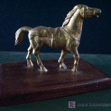 Antigüedades: ANTIGUO CABALLO DE BRONCE, SOBRE PEANA DE MADERA.. Lote 27070570
