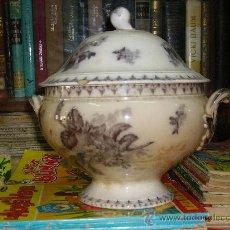 Antigüedades: SOPERA DE SARREGUEMINES. Lote 26220741