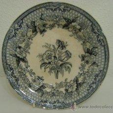 Antigüedades: ANTIGUO PLATO LLANO DE PORCELANA INGLESA - 1848. Lote 69792439