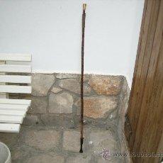 Antigüedades: BASTON DE HIPICA. Lote 23783970