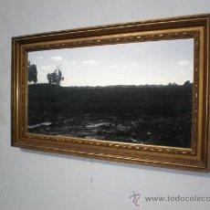 Antiquités: ESPEJO DE MADERA DORADA. Lote 23623729