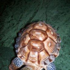 Antigüedades: TORTUGA CAJA DE PORCELANA INGLESA WADE.. Lote 26580313