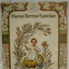 Antigüedades: FLORES DE TIERRA SANTA. Lote 30177534