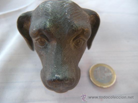 Antigüedades: ANTIGUA CABEZA DE PERRO EN BRONCE. CLAVO PASADOR. S. XIX - Foto 5 - 31945553