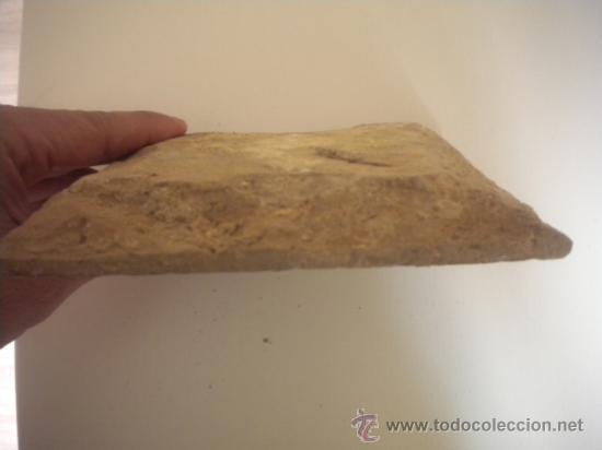 Antigüedades: AZULEJO TRIANA SIGLO XVII-XVIII - Foto 2 - 35921068