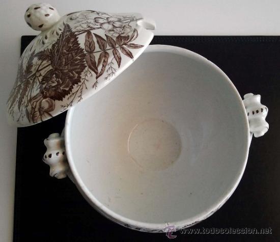 Antigüedades: Antigua Sopera Sandeman Macdougall. Serie Fern. China Opaque. - Foto 3 - 38065000