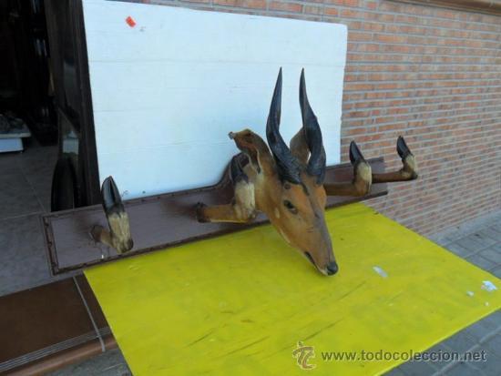 TROFEO DE CAZA CABEZA DE ANTILOPE CON PATAS DE PERCHA (Antigüedades - Hogar y Decoración - Trofeos de Caza Antiguos)