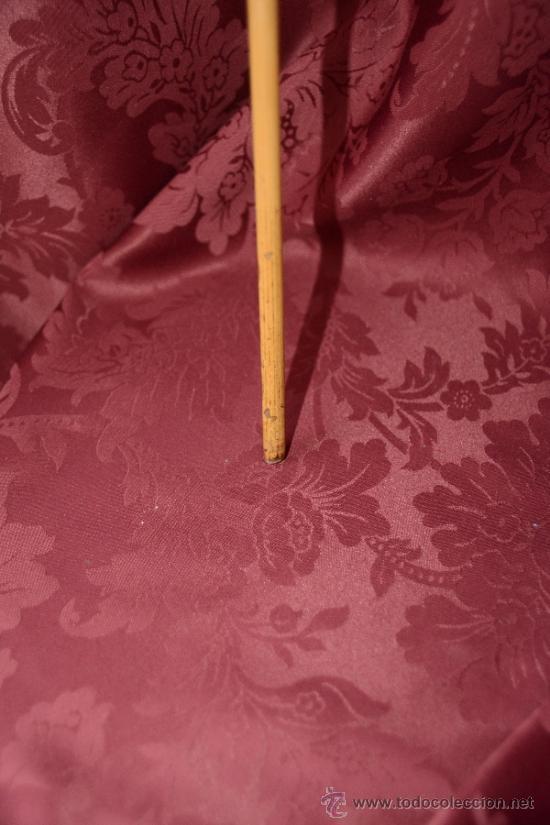 Antigüedades: precioso bastón de caña con cabeza de perro tallada en la raiz - Foto 10 - 39117738