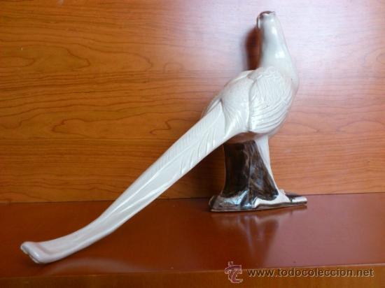Antigüedades: Elegante Faisan antiguo en porcelana, hecho y pintado a mano. - Foto 6 - 39175448