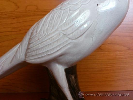 Antigüedades: Elegante Faisan antiguo en porcelana, hecho y pintado a mano. - Foto 16 - 39175448
