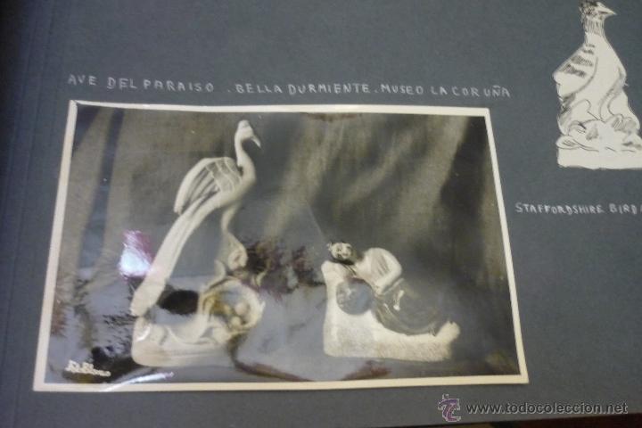 Antigüedades: Álbum catálogo de loza de Sargadelos - Foto 53 - 39467018