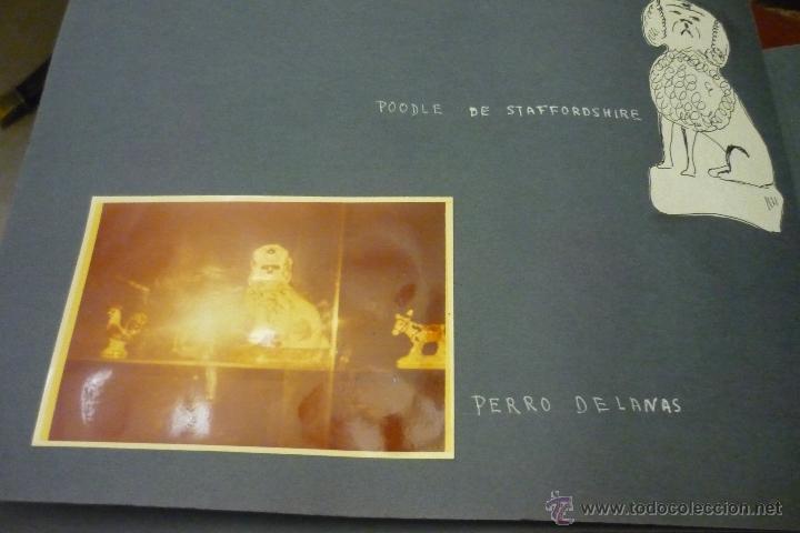 Antigüedades: Álbum catálogo de loza de Sargadelos - Foto 54 - 39467018