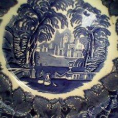 Antigüedades: ANTIGUO PLATO, DE CERAMICA, VISTA ENGLAND.MASON.PATENTIRONSTONE,.CHINA.RESISTING COLOURS. Lote 39620208