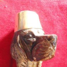 Antigüedades: BASTON CABEZA DE PERRO. Lote 40160764
