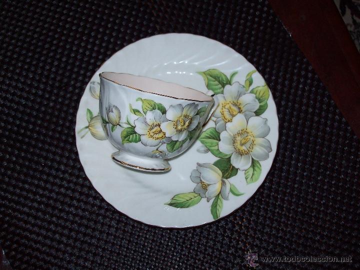 Taza con plato porcelana aynsley england comprar - Porcelana inglesa antigua ...