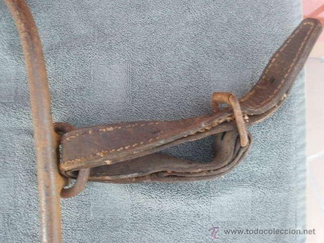 Antigüedades: COLLERA DE HIERRO FORJADO, CON CORREAS DE CUERO - Foto 3 - 41278906