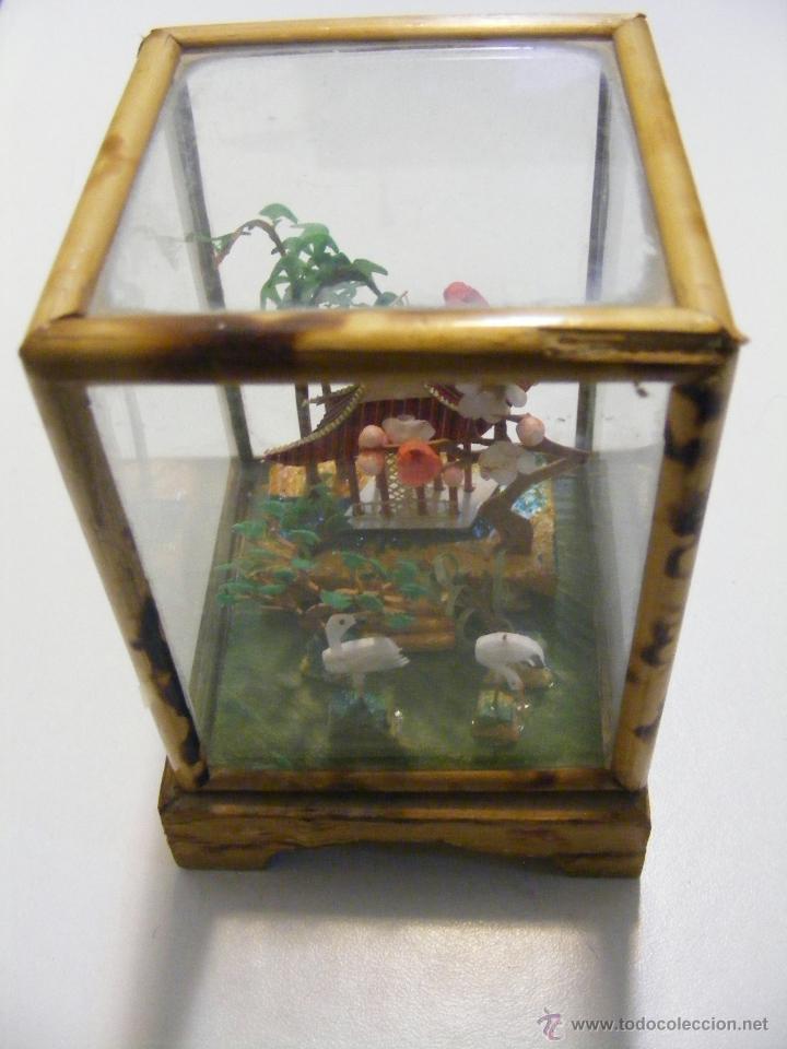 Curiosa y antigua caja de vidrio y madera con c comprar - Caja madera antigua ...