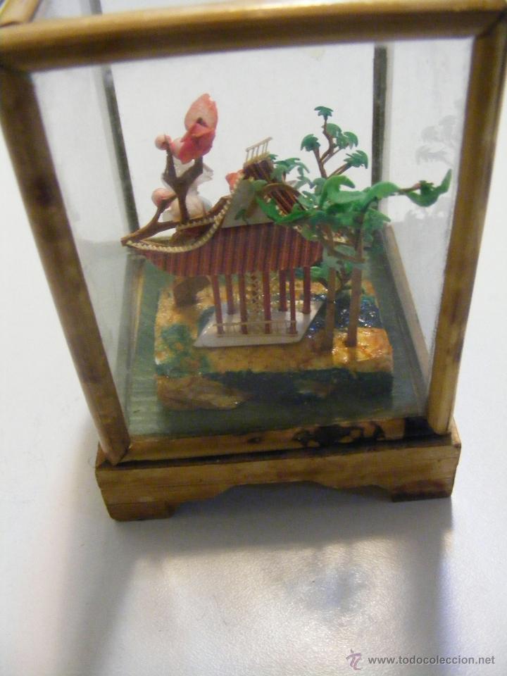 Curiosa Y Antigua Caja De Vidrio Y Madera Con C Comprar