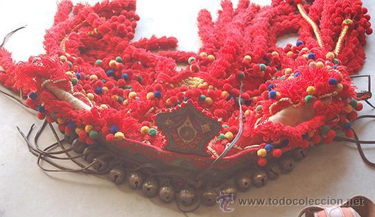 Antigüedades: Guarnición de gala para caballo, siglo XX - Foto 11 - 42270165