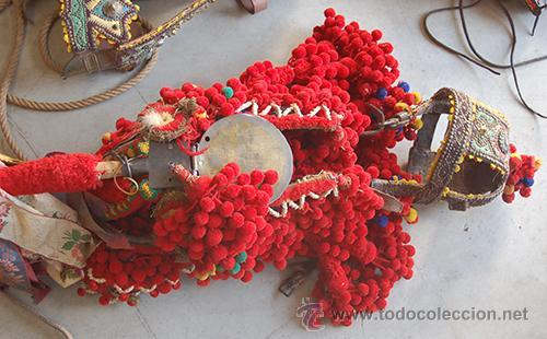 Antigüedades: Guarnición de gala para caballo, siglo XX - Foto 23 - 42270165