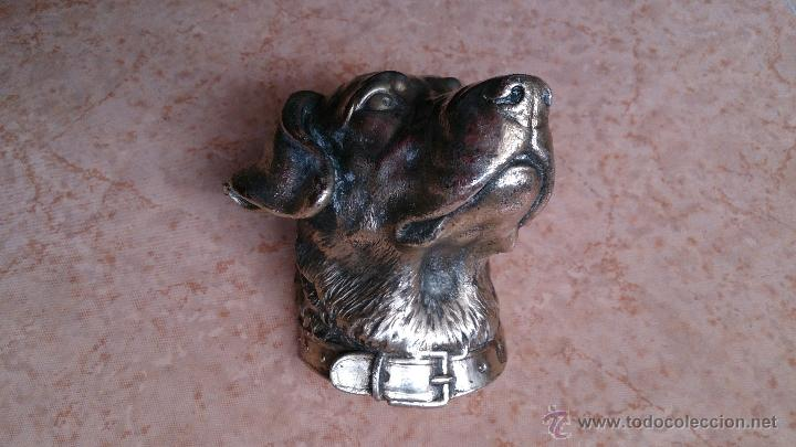 Antigüedades: Antiguo busto de perro labrador laminado en plata de ley. - Foto 3 - 42300509