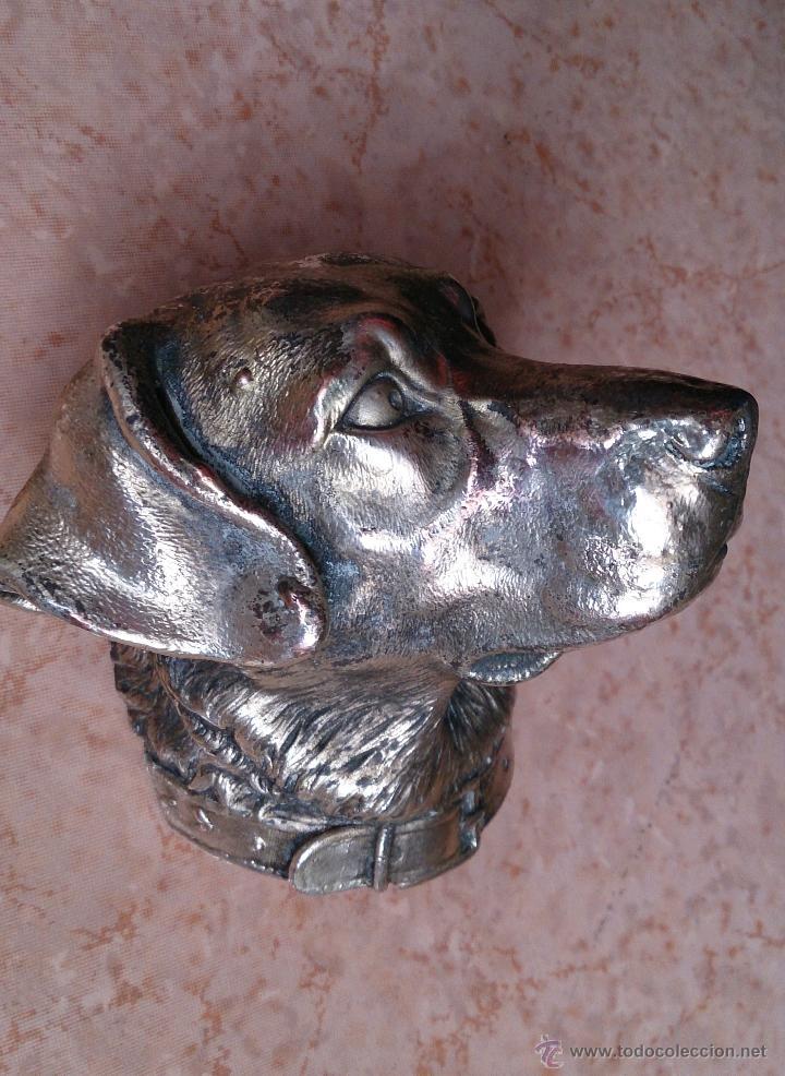 Antigüedades: Antiguo busto de perro labrador laminado en plata de ley. - Foto 6 - 42300509