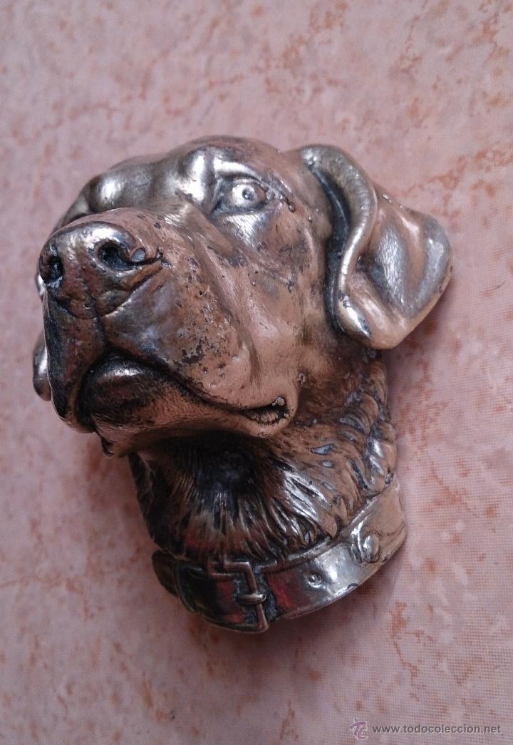 Antigüedades: Antiguo busto de perro labrador laminado en plata de ley. - Foto 7 - 42300509