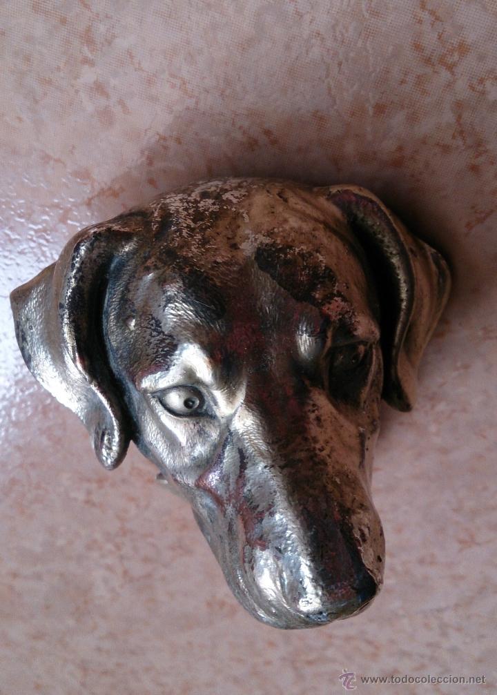 Antigüedades: Antiguo busto de perro labrador laminado en plata de ley. - Foto 8 - 42300509