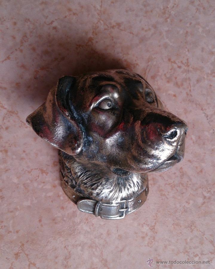 Antigüedades: Antiguo busto de perro labrador laminado en plata de ley. - Foto 12 - 42300509