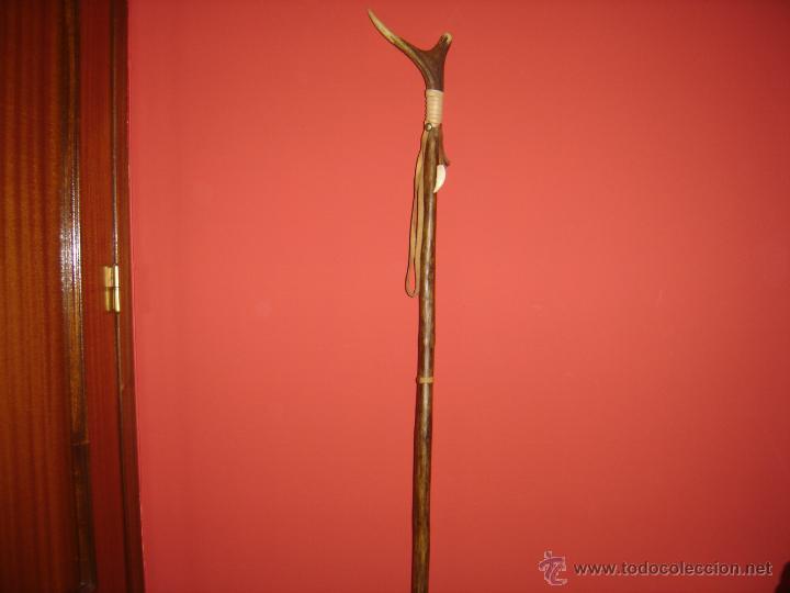 Antigüedades: BASTON DE MADERA DE OLIVO Y EMPUÑADURA EN CUERNA DE CIERVO. VENADO. ARTESANAL - Foto 5 - 42304327
