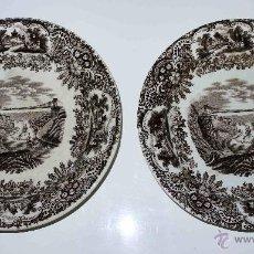 Antigüedades: PAREJA PLATOS PICKMAN S. XIX. PUENTE DE CLIFTON. Lote 42492933