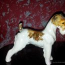 Antigüedades: PERRO FOX TERRIER DE PORCELANA ALEMANA CON SELLO DE LIMBACH. Lote 43227949