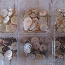 Antigüedades - Lote de más de 400 botones de nácar antiguos. - 44074226