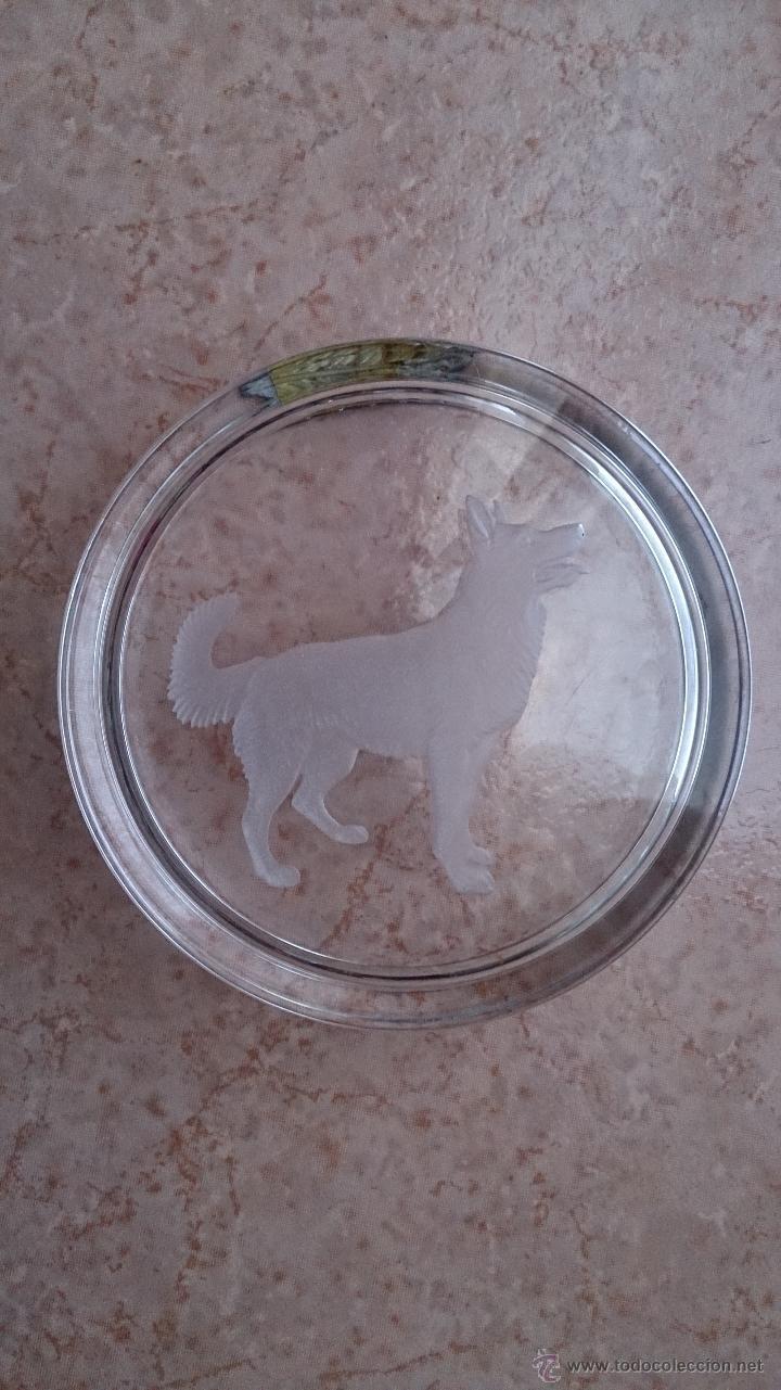 Antigüedades: Antiguo cenicero en cristal con grabado de pastor alemán y adorno en plata de ley repujada . - Foto 5 - 44763010