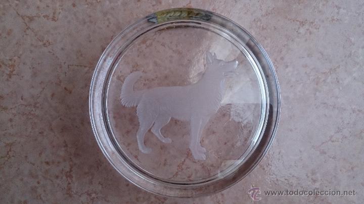 Antigüedades: Antiguo cenicero en cristal con grabado de pastor alemán y adorno en plata de ley repujada . - Foto 8 - 44763010